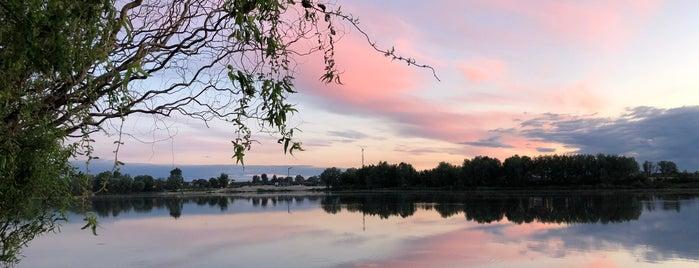 Озеро Вишневе Мiстечко is one of Oleksandr'ın Beğendiği Mekanlar.