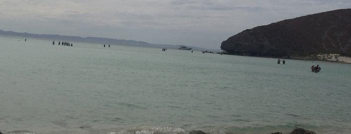 La Paz is one of Locais curtidos por Cris.