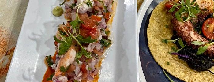 Holbox is one of foodforfel'in Beğendiği Mekanlar.