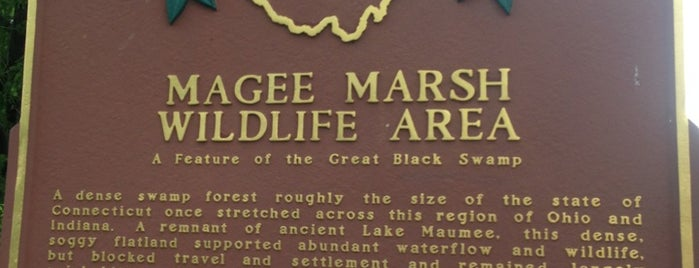 Magee Marsh Wildlife Area is one of 82 Best Birdwatching Spots in the US.