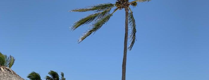 Playa Akumal is one of MEX.