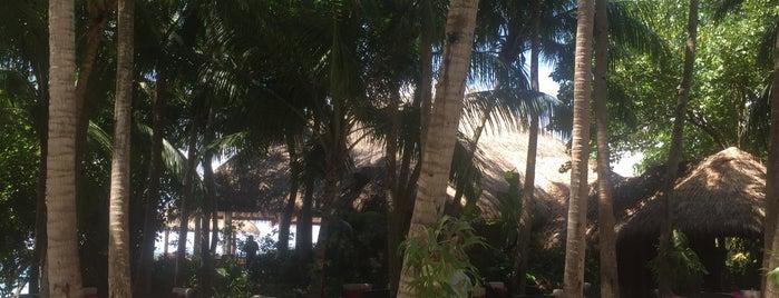 Baros Palm Garden is one of M'ın Beğendiği Mekanlar.