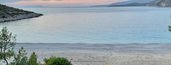 Τραχήλι (Trachili Beach) is one of Chios.