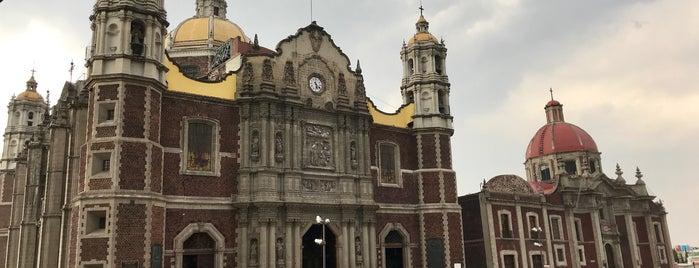Parroqi De La Virgen De Giadalupe. Capuchina is one of Mexico City.