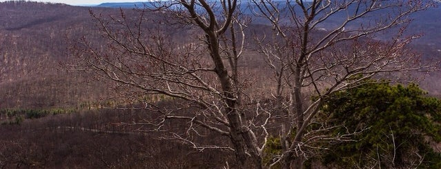 Appalachian Trail: Bear Mountain - Harriman State Parks – West is one of Up North/Catskill/upstate.