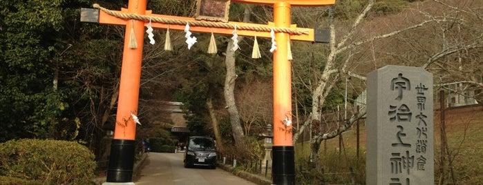 Ujigami Shrine is one of Lieux qui ont plu à Saejima.