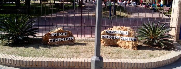 """Parque Municipal de Gines """"Concejala Dolores Camino"""" is one of Lieux qui ont plu à Javier."""