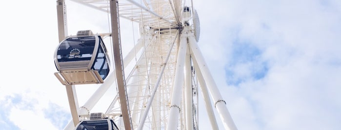 The Seattle Great Wheel is one of N.L and M.C.'s Best of the Best.