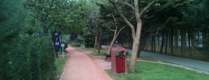 Özgürlük Parkı is one of İstanblue.