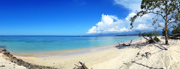 Turtle Point is one of Gili + Lombok.