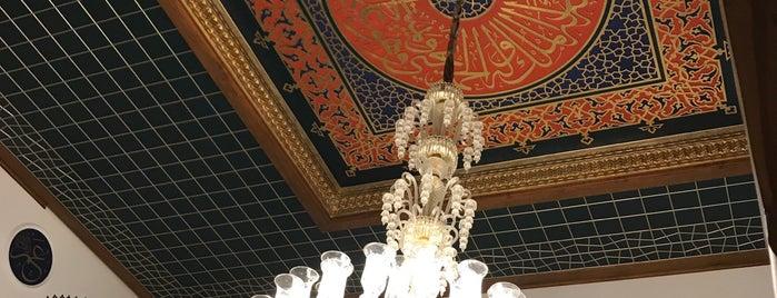 Validebağ Koru Camii is one of สถานที่ที่ MEHMET YUSUF ถูกใจ.