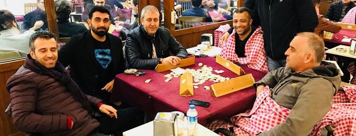 Palmiye Çay Bahçesi is one of MEHMET YUSUF'un Beğendiği Mekanlar.