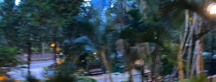 Caine Road Garden is one of Locais curtidos por Chris.