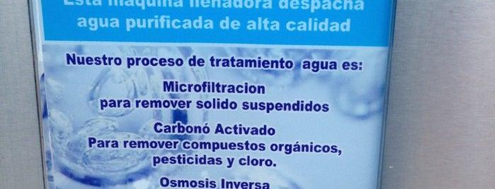 Ecologica De Mexico is one of สถานที่ที่ Felipe ถูกใจ.