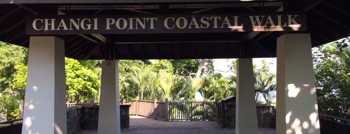 Changi Point Coastal Walk is one of Singapore.