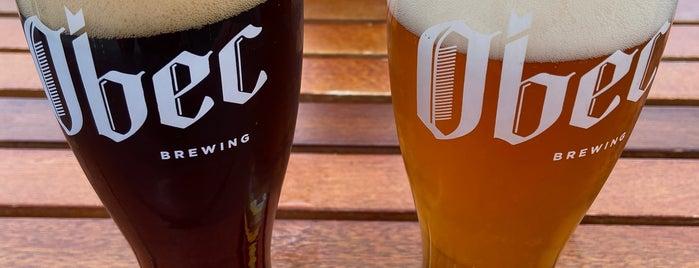 Obec Brewing is one of Ballard.