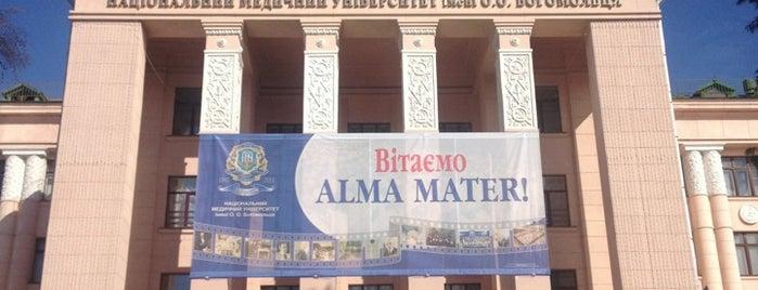 Національний медичний університет імені О.О. Богомольця / National Medical University is one of สถานที่ที่ Boris ถูกใจ.