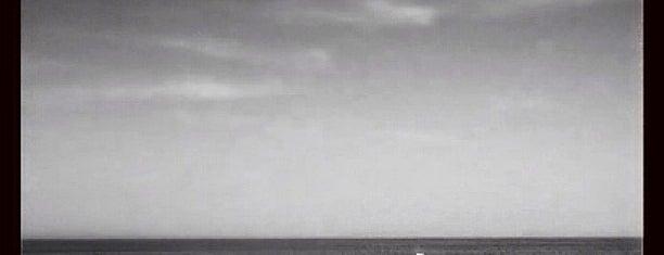 Bar Harbor Whale Watch Co. is one of Orte, die Dana gefallen.