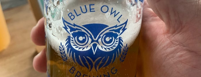 Blue Owl Brewing is one of Austin.