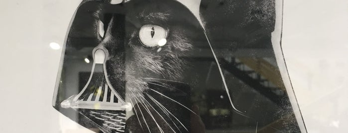 Suara is one of BCN.