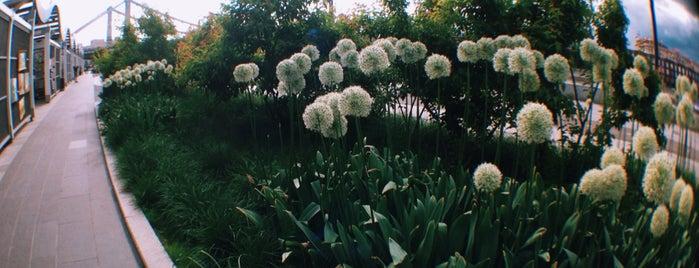 Muzeon Park is one of Locais curtidos por Анастасия.