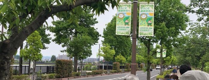 維摩池 is one of East Nagoya.