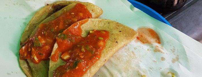 Tacos De Canasta Pemex is one of Fernando 님이 좋아한 장소.