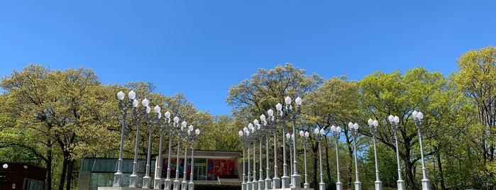 Rose Art Museum is one of American Arts Pilgrimage.