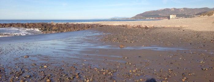 San Buenaventura State Beach is one of Lieux qui ont plu à Eric.