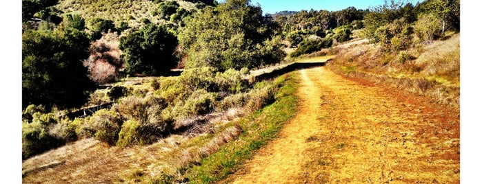 Grass Valley Trail is one of Kouros'un Kaydettiği Mekanlar.