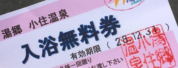 小住温泉 is one of Lugares favoritos de Tanaka.