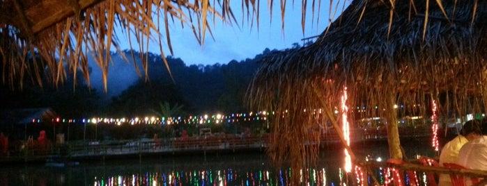 Veg Fish Farm Thai Restaurant (菜园酒家) is one of Graceさんの保存済みスポット.