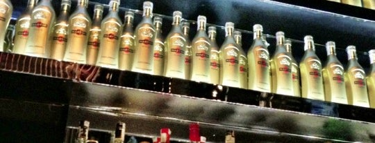 Dolce & Gabbana Martini Bar is one of Italy!.
