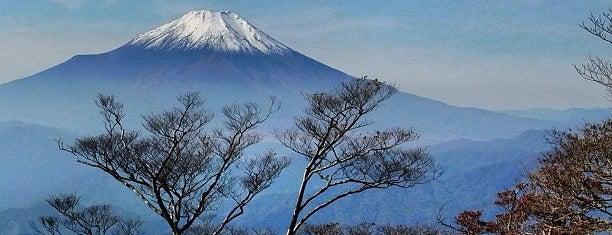 檜洞丸 is one of 丹沢・大山.
