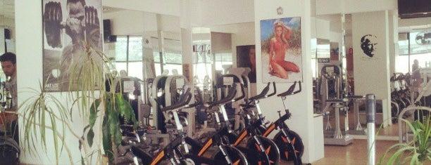 Sportmax Gym & Fitness is one of Locais curtidos por ⛵️surfer.
