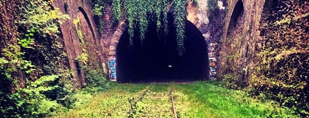 Petite Ceinture du 15e is one of Lugares favoritos de Kevin.