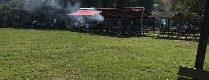 Alacaatlı Çınaraltı Piknik Alanı is one of Tempat yang Disukai Fatih.