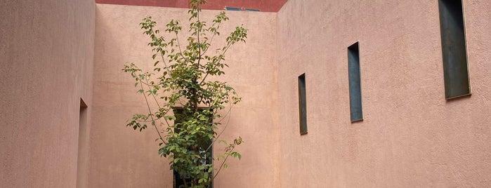 Hierba Dulce is one of Oaxaca, Mexico.