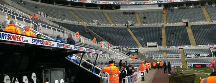St James' Park is one of Stadiums.