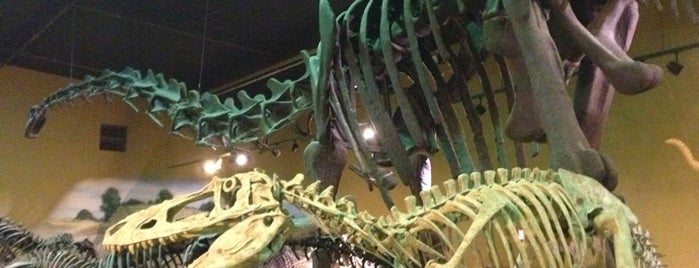 The Wyoming Dinosaur Center is one of Go, Do, Explore.