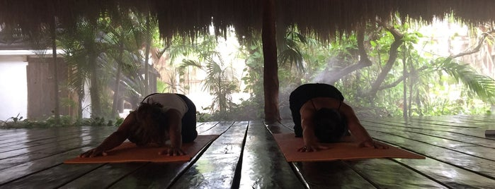 Yoga Shala Tulum is one of Mexique.
