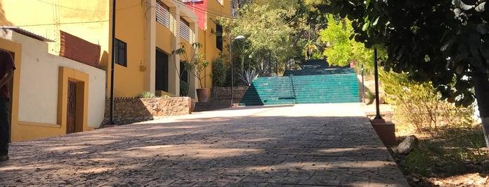 Escaleras del Fortín is one of Locais salvos de Restaurante Catedral.