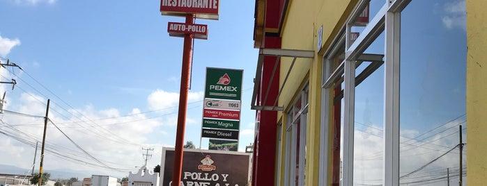 Pollo Feliz is one of Leopoldo : понравившиеся места.