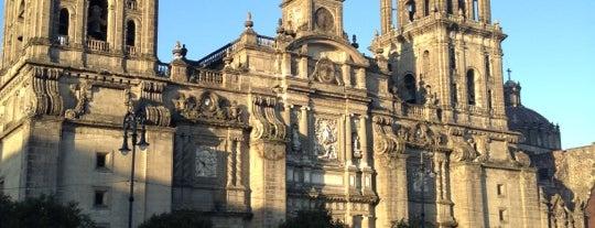 Catedral Metropolitana de la Asunción de María is one of D.F..