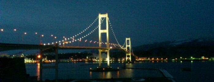 白鳥大橋 is one of 日本夜景遺産.