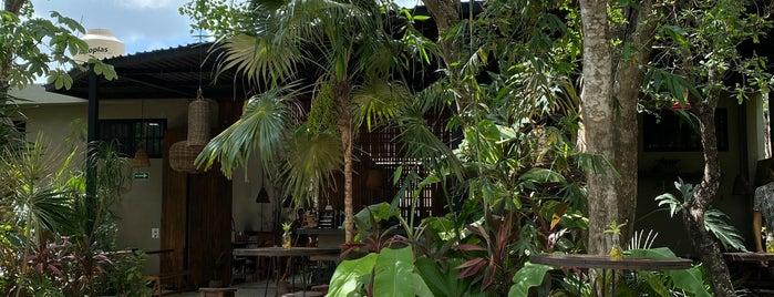Botánica Garden Café is one of Tulum.