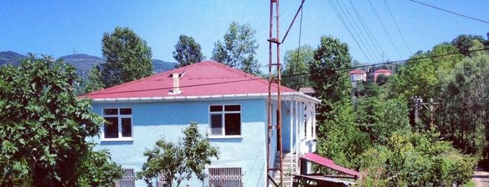 Yaraşlı/Akgül-Mustafa Ordu evi is one of Tempat yang Disukai Hakan O..
