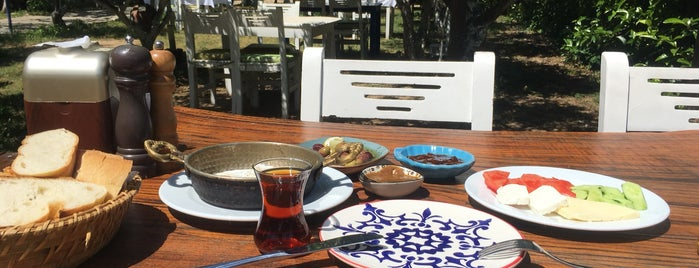 Çökelek Restaurant  & Kahvaltı  Evi is one of Bodrum Bitez.