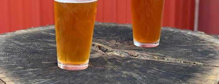 That Damn Mary Brewery is one of Lieux sauvegardés par Rachel.