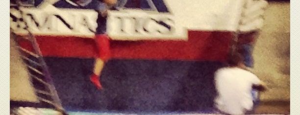 New Hope Gymnastics is one of California.